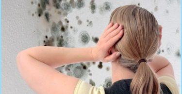 Miten päästä eroon hometta kylpyhuoneessa: keinona torjua