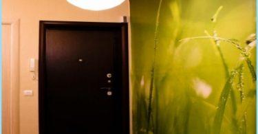 Photo seinä käytävällä ja eteinen