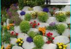Työ puutarhassa maaliskuussa: miten hoitaa puutarhaasi?