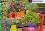 Top 10 kasveja solariumit - jotka istuvat aurinkoisella puolella?