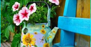 Vertical puutarhanhoito puutarha omin käsin: vihjeitä maisemasuunnittelijoille