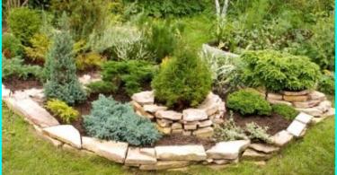 Miten valita puutarha sumutin: katsaus vaihtoehdoista + vinkkejä valitsemalla